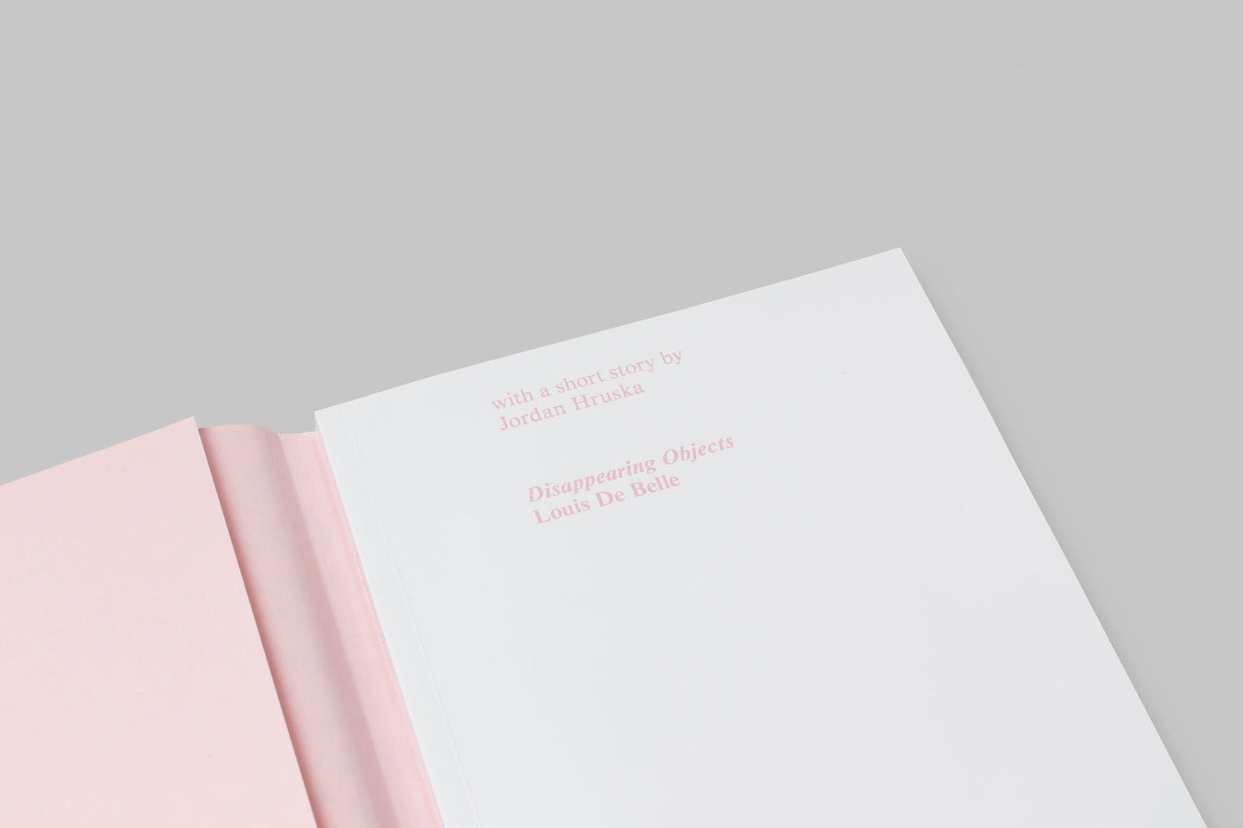 LOUIS DE BELLE Disappearing Objects Book